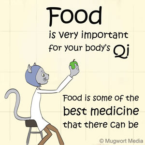 Dr. Meow talks about food being good for the body's qi